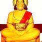 3rd Cosmic Hanuman Havan (August 2014)